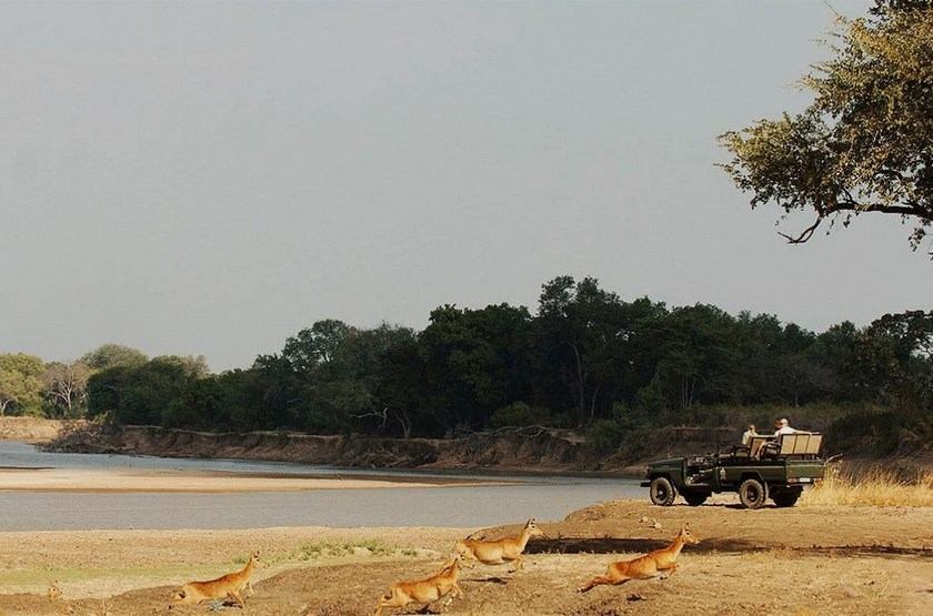 Chinzombo, South Luangwa, Zambie, safari en 4x4