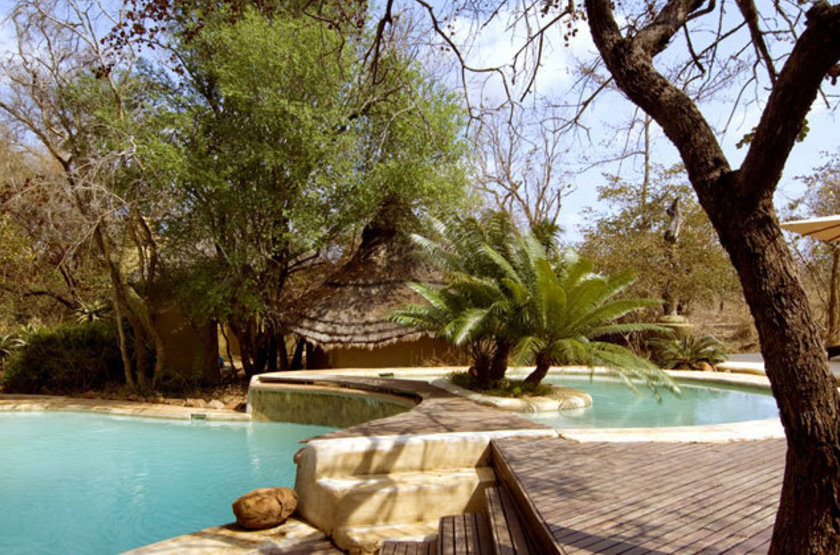 Ulusaba thingtodo safarilodge pool large slideshow