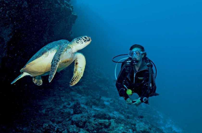 Kanahura diving2 slideshow