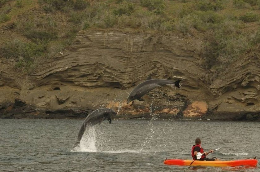 L'Eclipse, Galapagos, Equateur, kayak