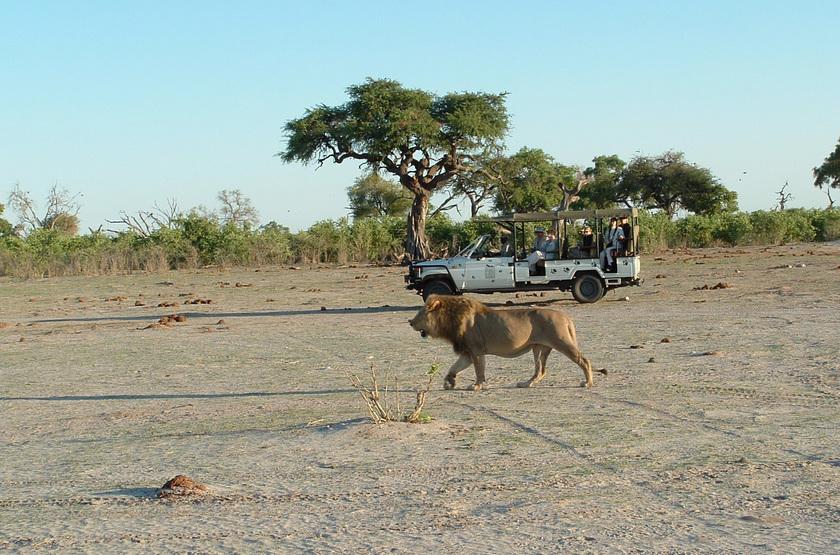 Belmond Savute Elephant Lodge, Chobe Park, Botswana, safari en 4x4