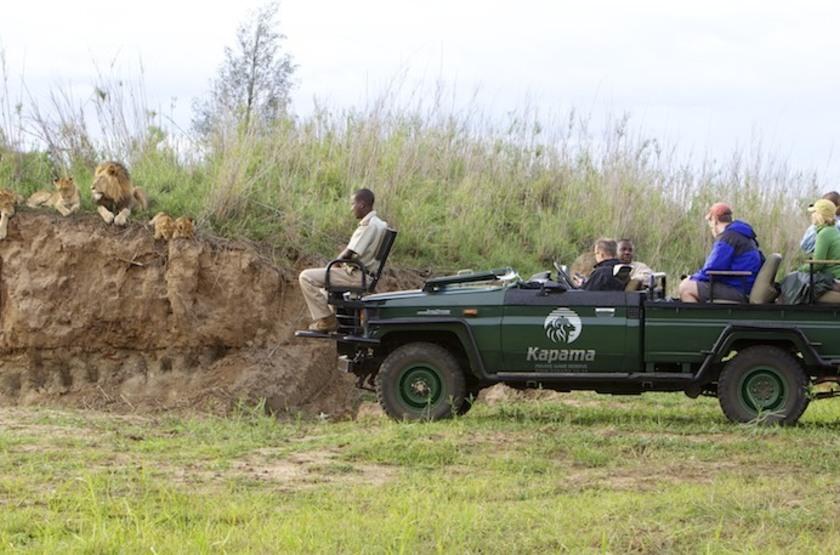 Kapama Karula, Afrique du Sud, safari en 4x4