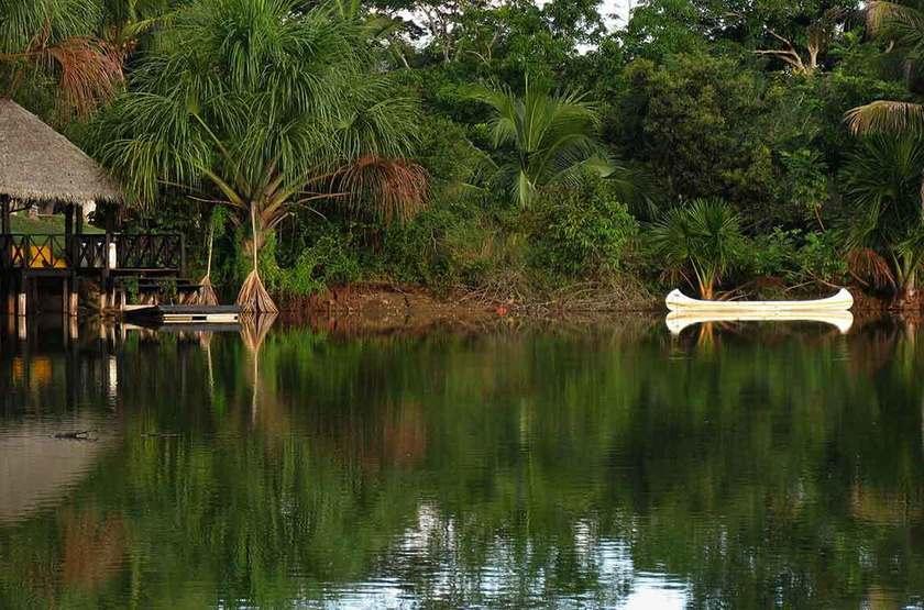 Puerto palmeras   puerto palmeras   p rou   reserve ecologique slideshow