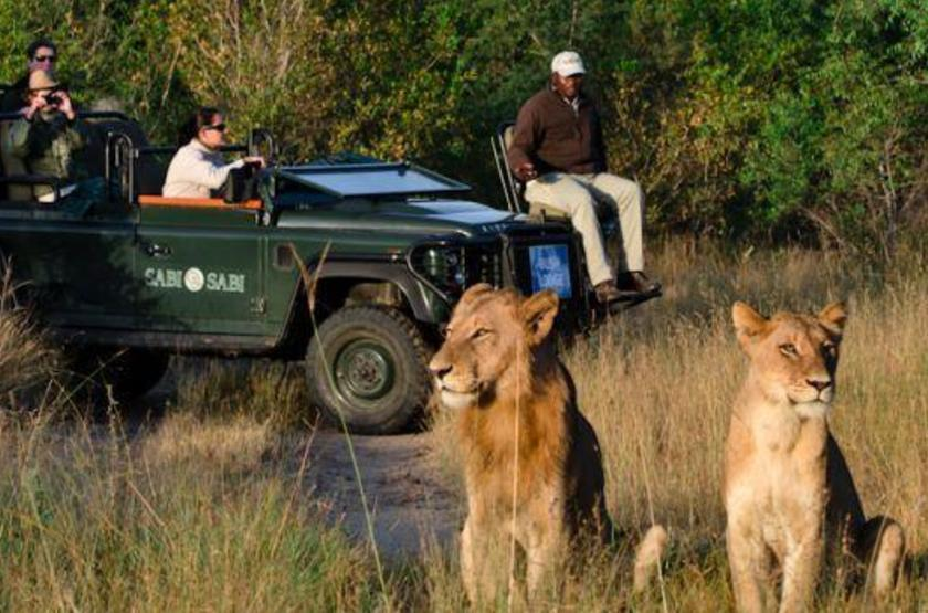 Sabi Sabi Earth Lodge, Sabi Sand Reserve, Afrique du Sud, safari en 4x4