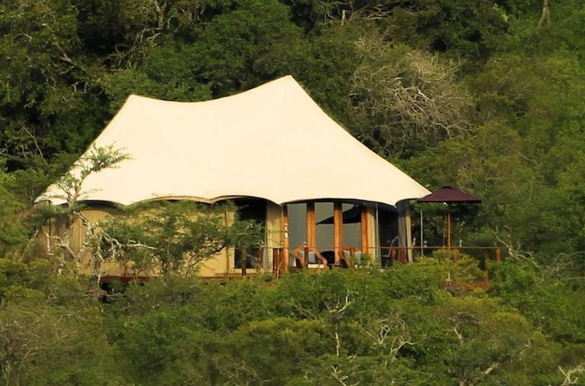 Thanda Safari Lodge, Hluhluwe, Afrique du Sud, Thanda Camp