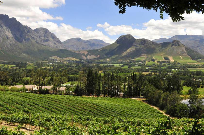 La Petite Ferme, Franschhoek, Afrique du Sud, paysage