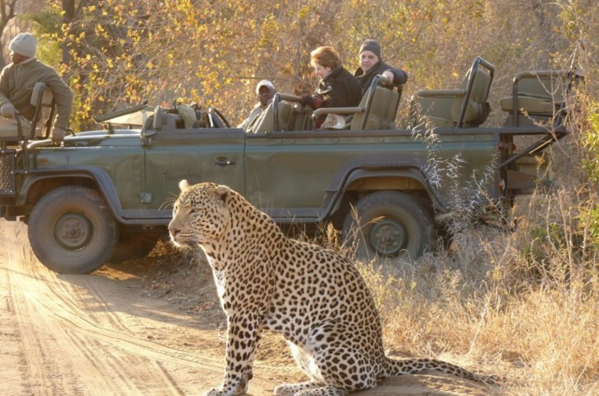 Serondella Lodge, Thornybush, Afrique du Sud, safari en 4x4