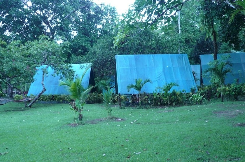 Corcovado Adventure Tent, Drake Bay, Costa Rica, jardins