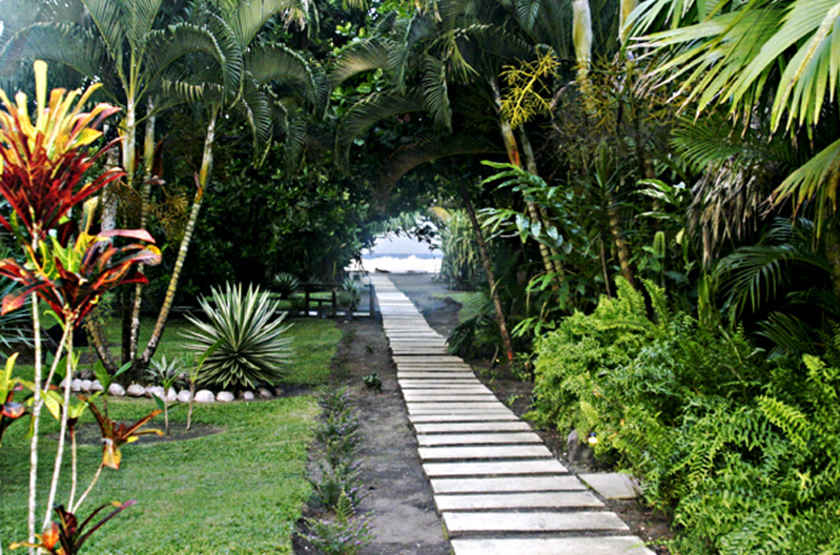 Turtle Beach Lodge, Tortuguero, Costa Rica, jardins