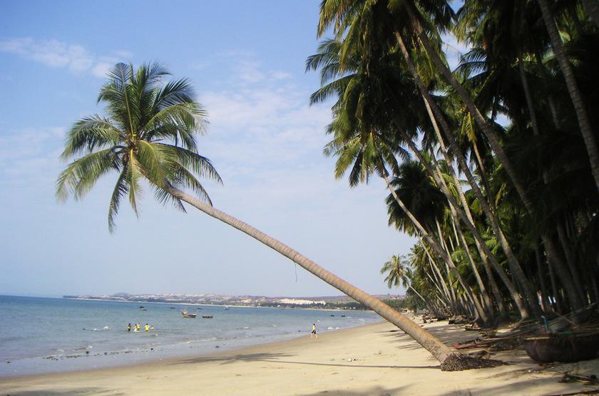 Dolphin Lodge - Ile Uaguinega, San Blas, Panama, plage