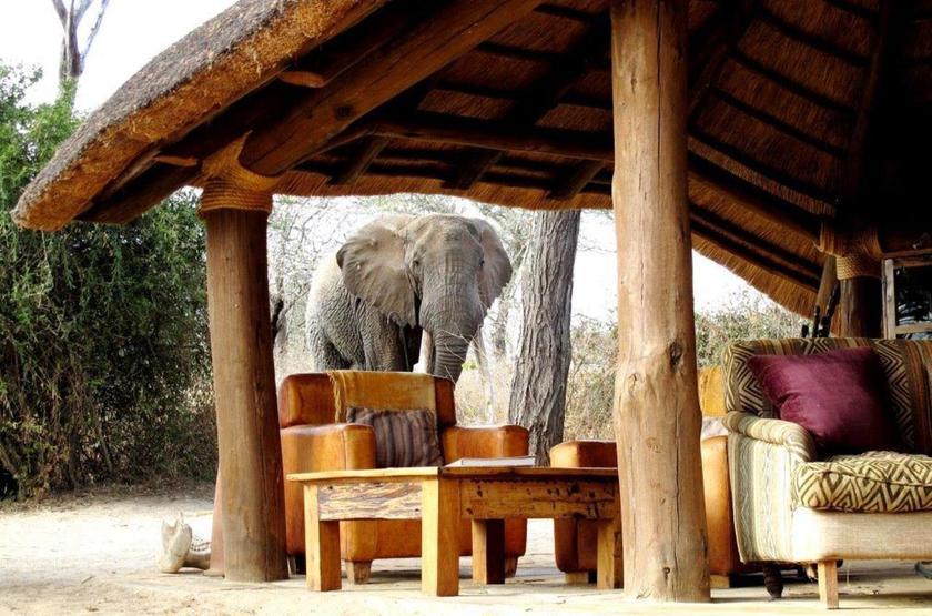 Oliver's Camp, Tarangire, Tanzanie