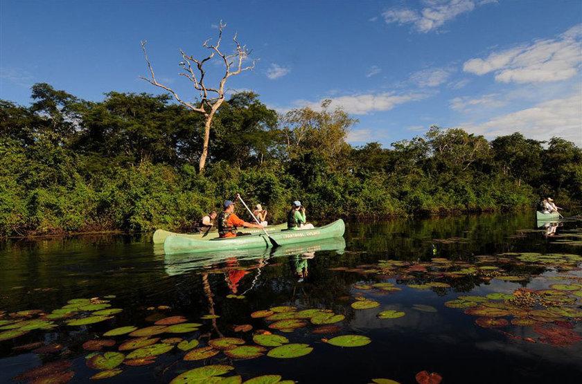 Araras Eco Lodge, Pantanal nord, Brésil, excursion
