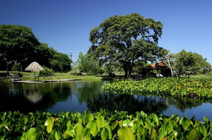 Refugio da Ilha, Pantanal, Brésil, paysages