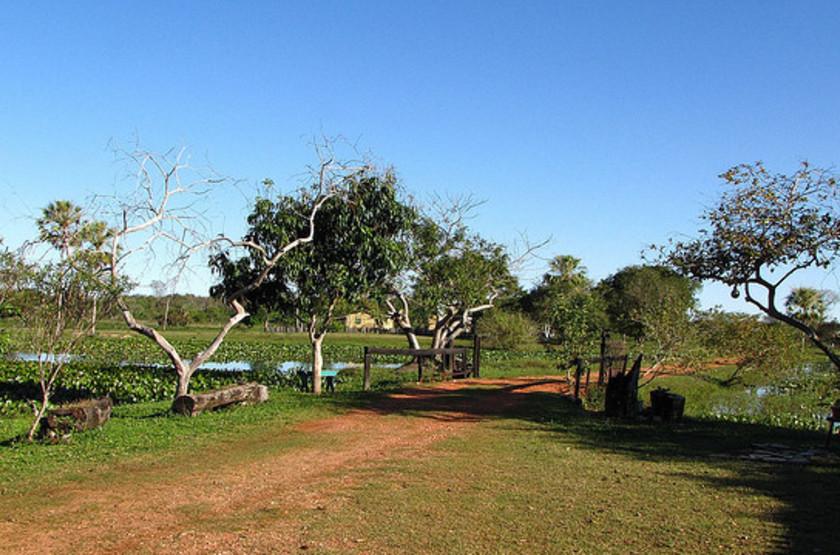 Refugio da Ilha, Pantanal, Brésil