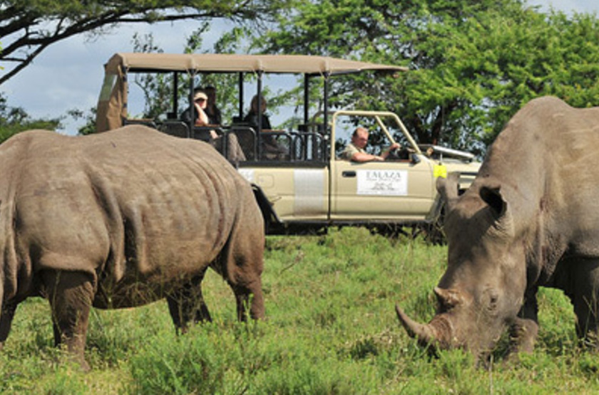 Falaza Game Lodge, Afrique du Sud, safari en 4x4