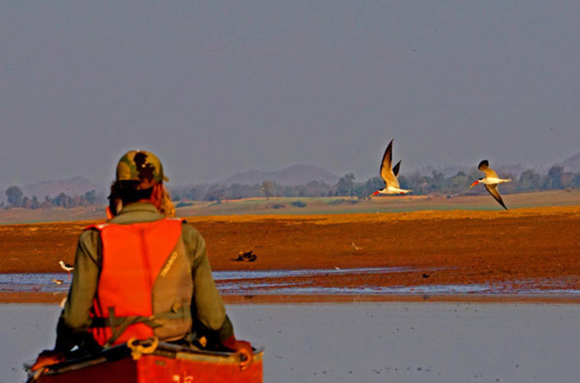 Reni Pani Jungle Lodge, Satpura Reserve, Inde, safari en canoë