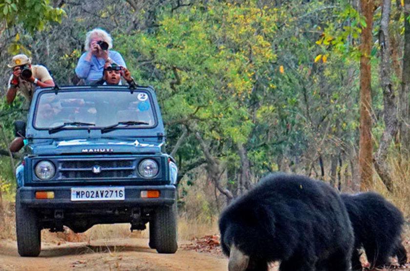 Reni Pani Jungle Lodge, Satpura Reserve, Inde, safari en 4x4