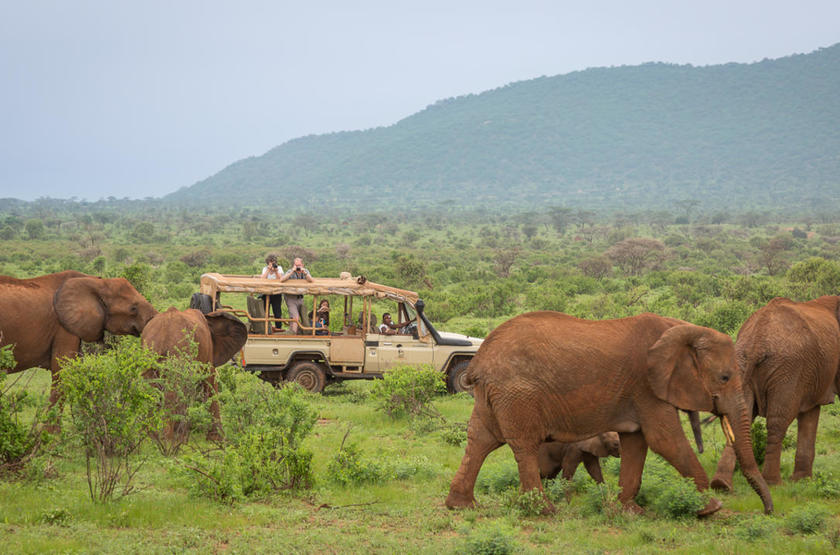 Elephant Bedroom Camp, Samburu, Kenya, safari en 4x4