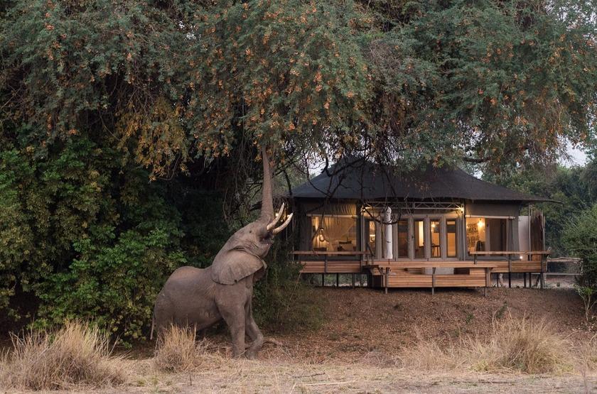 Chikwenya Camp, Parc de Hwange, Zimbabwe, extérieur