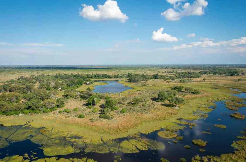 Qorokwe, Delta de l'Okavongo, Botswana, safari, paysage