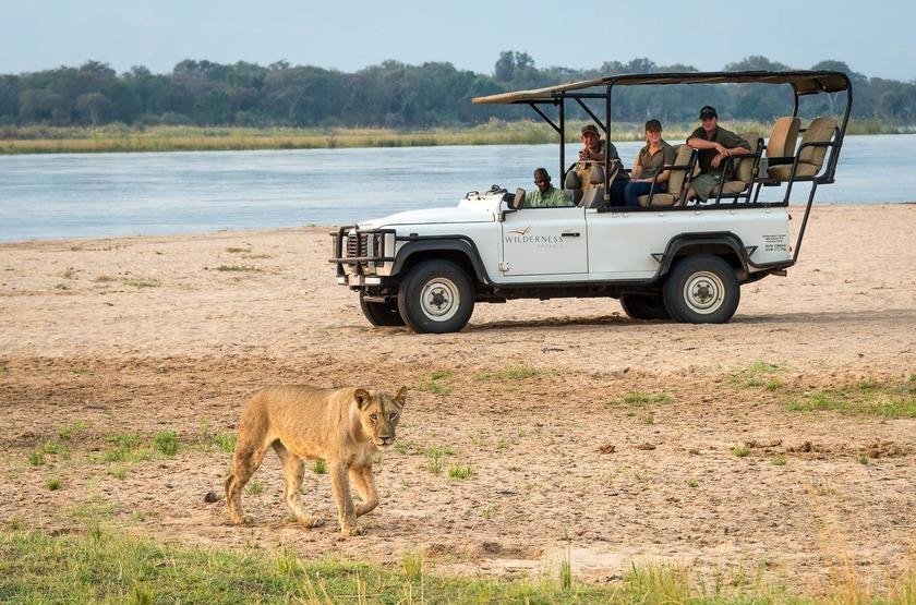 Little Ruckomechi, Mana Pools, Zimbabwe, safari, véhicule, lion