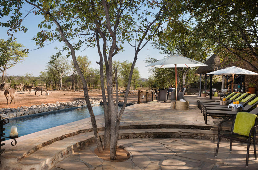 Ongava tented camp, Namibie, terrasse et piscine