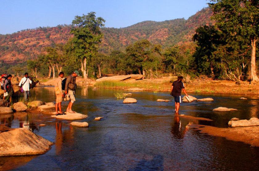 Reni Pani Jungle Lodge, Satpura Reserve, Inde, safari à pied