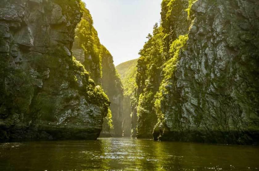 Canyon à Tsitsikamma, Afrique du Sud