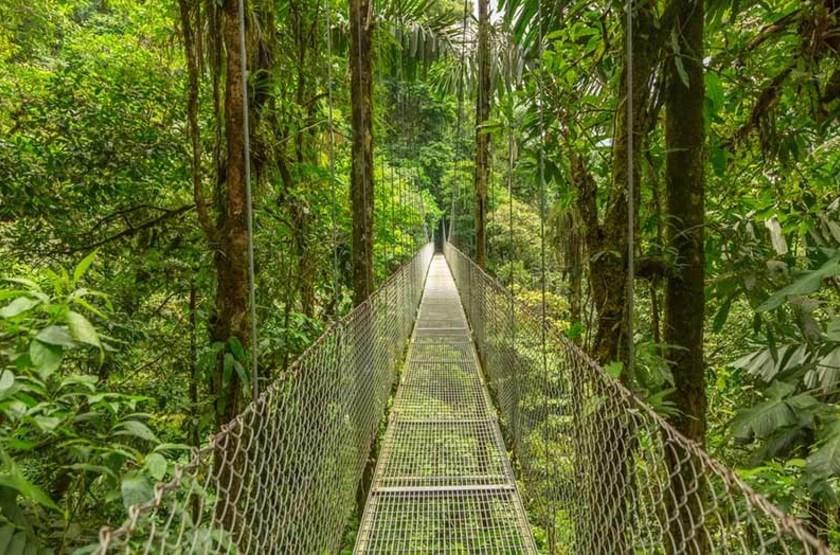Pont suspendu en forêt tropicale, Costa Rica