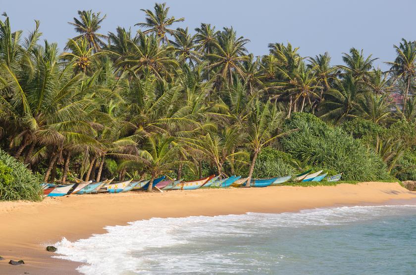Plage de Mirissa, Sri Lanka