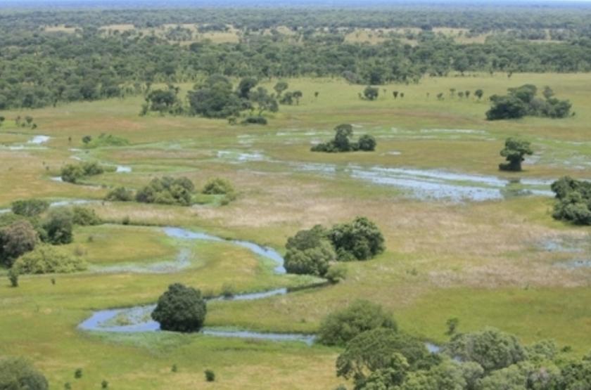 South Luangwa, Zambie