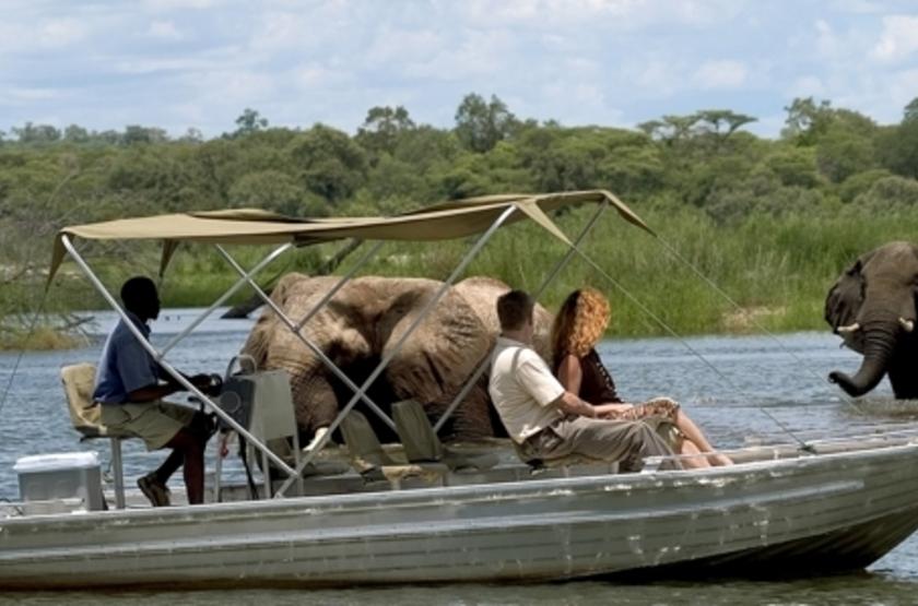 Safari en bateau en Zambie