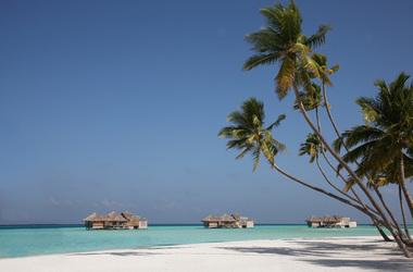 Une île Robinson aux Maldives, voyage Océan indien