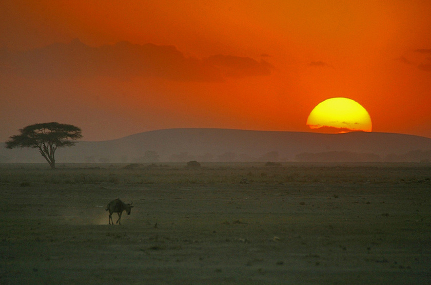 Kenya   amboseli   sunset slideshow