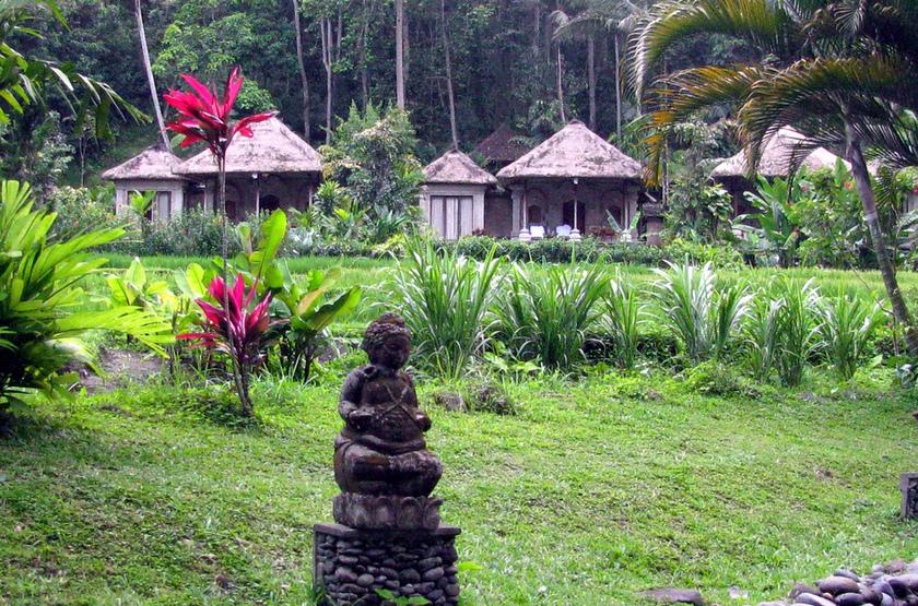 Village balinais, Indonésie