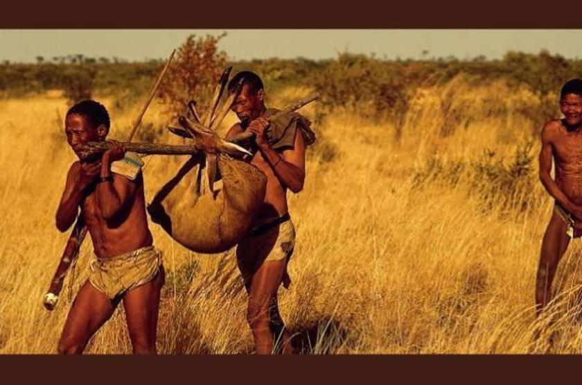 Bushman, Botswana