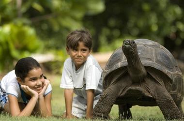 Séjour en famille aux Seychelles, paradisiaque !, voyage Océan indien