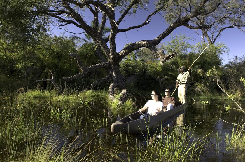 Safari en mokoro, Okavango, Botswana