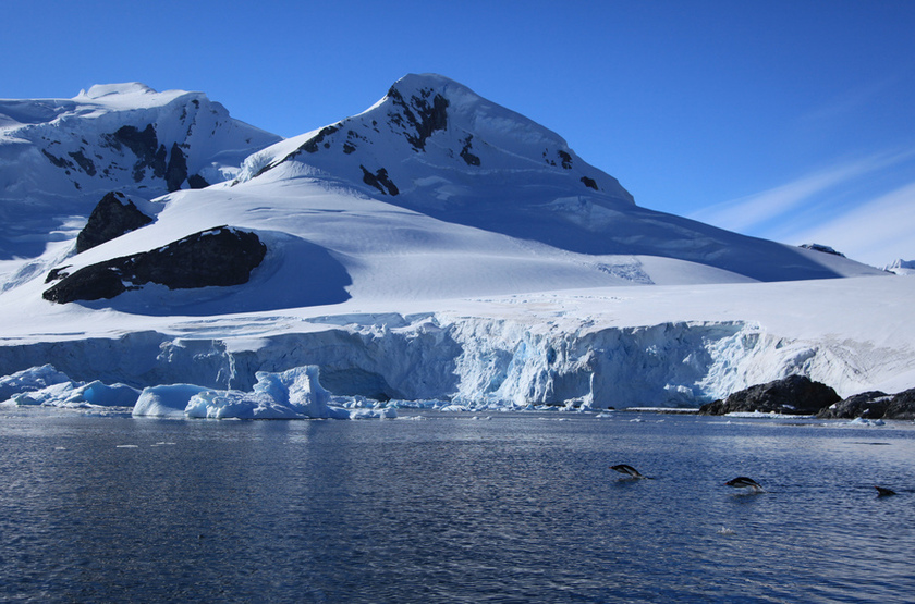 Paradise Bay, Antarctique
