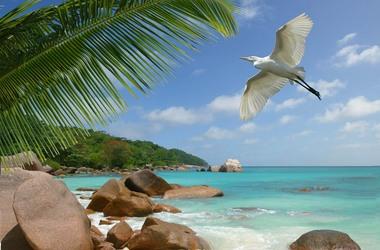 Les Seychelles en Guesthouses, à prix doux, voyage Océan indien