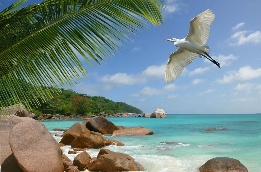 Seychelles plage mah  slideshow