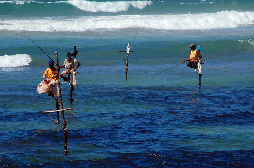 Pêcheurs Sri Lankais