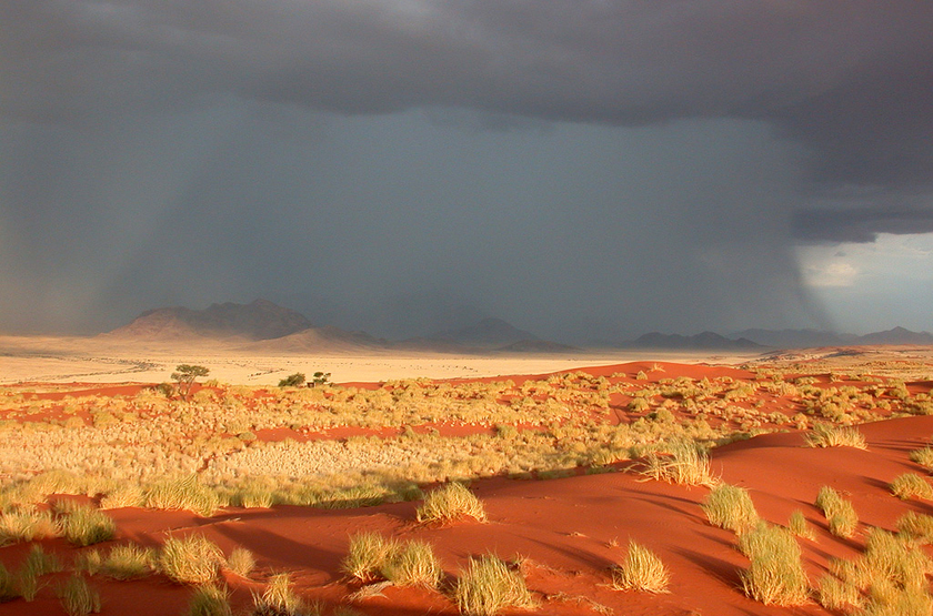 Dans le Damaraland, Namibie