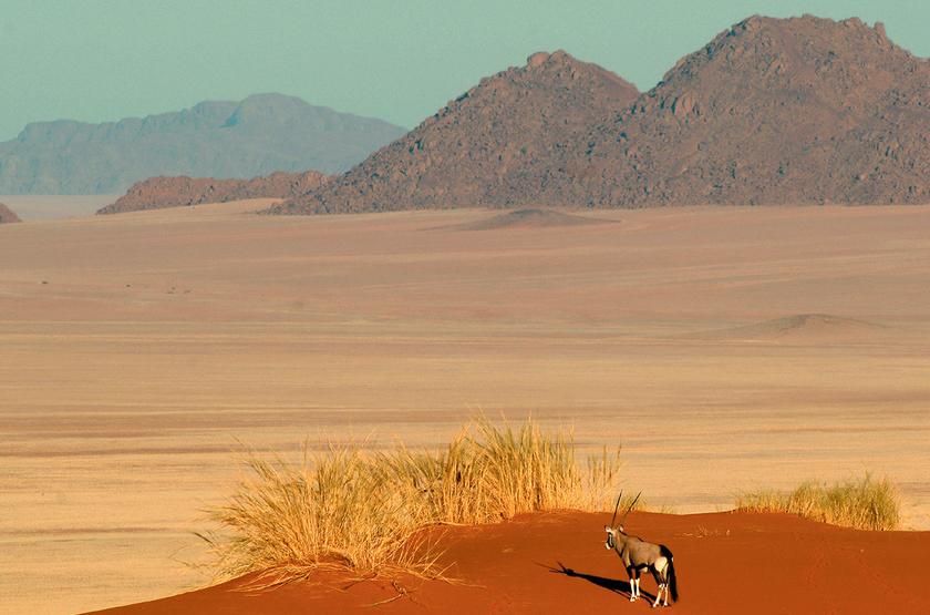 NamibRand Reserve, Namibie