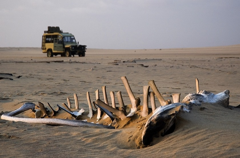Skeleton Coast, Namibie