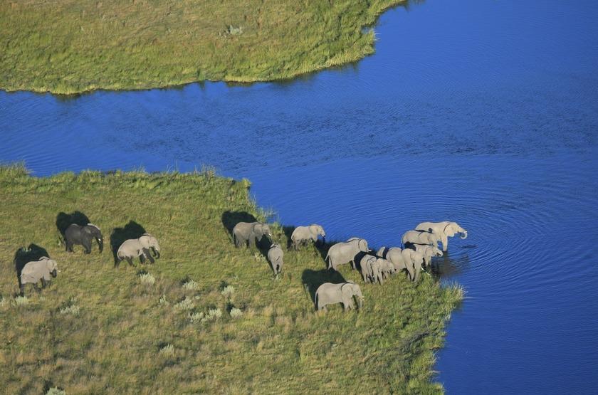 Delta de l'Okavango, Botswana, vue aérienne