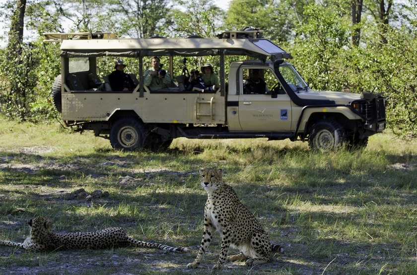 Safari en groupe au Botswana