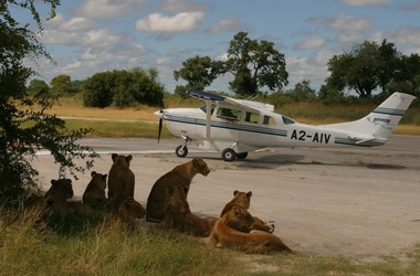 Tout le Botswana en avion taxi, voyage Afrique