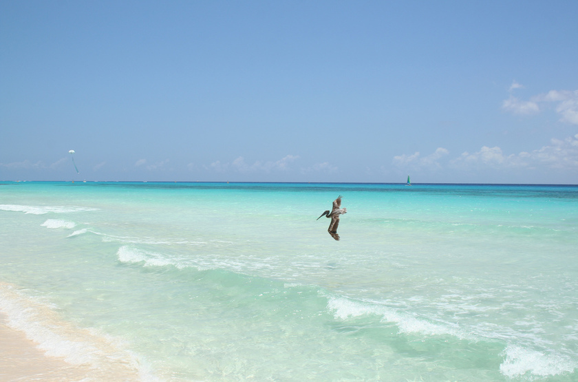 Playa del carmen slideshow