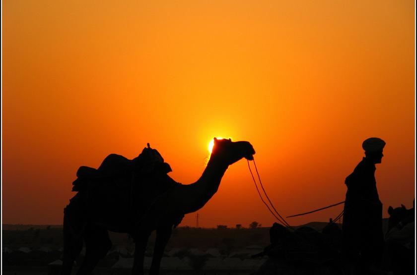 Voyage au Rajasthan, désert du Thar, Inde
